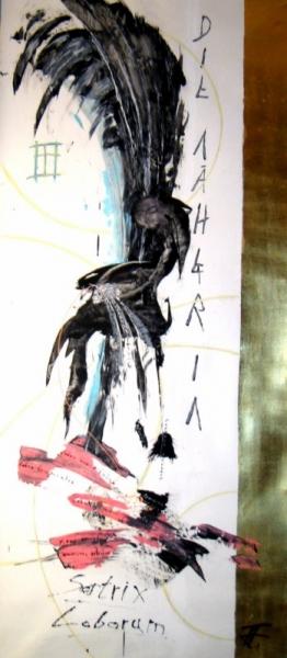 Satrix Loborum- Naeherin der Lappen