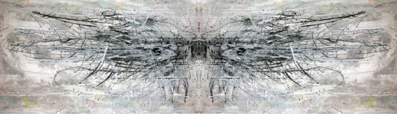 dendrite-fields_1